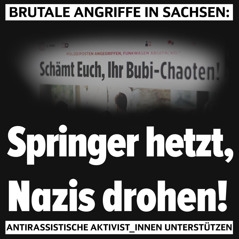 revo-springer-nazis